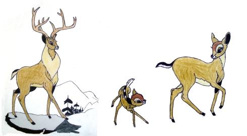 017 Bambi