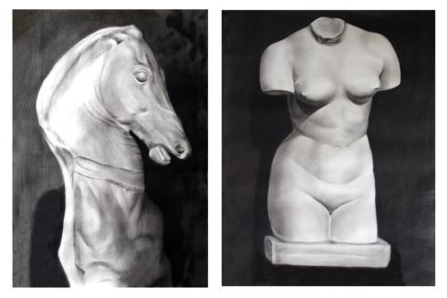 029 caballo - torso