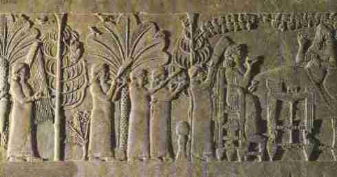 jardin babilonia dario