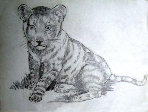 111 leon