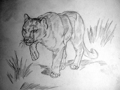 113 leona