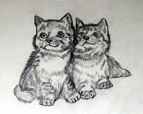 126 gatitos