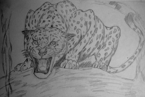 140 leopardo