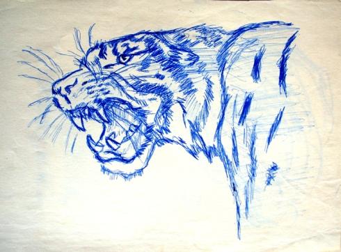 999 tigre