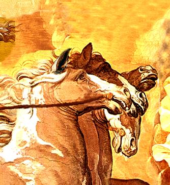 004 las orejas de los caballos