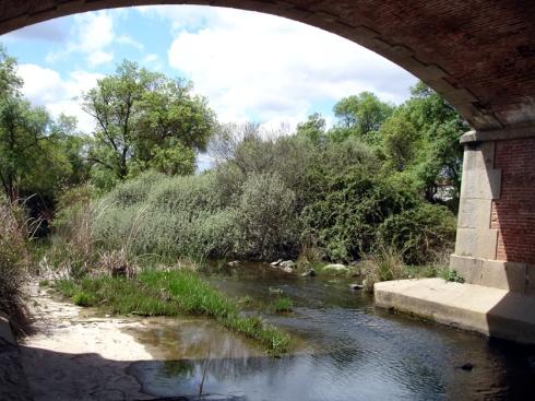 001 Puente del Pusa