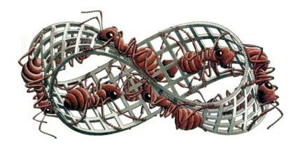022 Escher 32 camino infinito