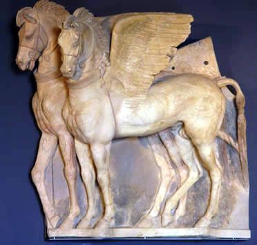 caballostarquinia
