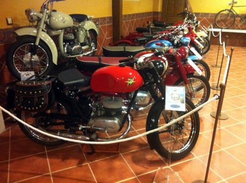 Museo MV 39