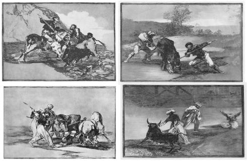 001 2 3 4 1Modo-con-que-los-antiguos-espanoles-cazaban-los-toros-en-el-campo