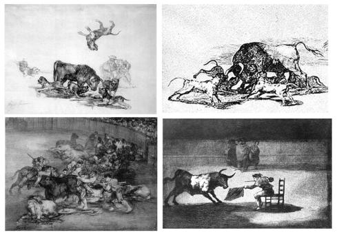 043 tauromaquia toro acosado por perros