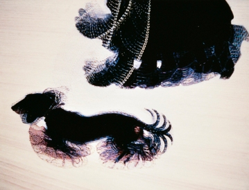 UNSPECIFIED - CIRCA 1986: Giacomo Balla (1871-1958), Dynamism of a Dog on a Leash, 1912, oil on canvas. (Photo By DEA PICTURE LIBRARY/De Agostini/Getty Images)